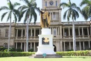 ハワイカメハメ王