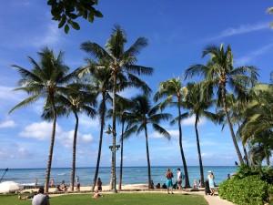 ハワイ風景2
